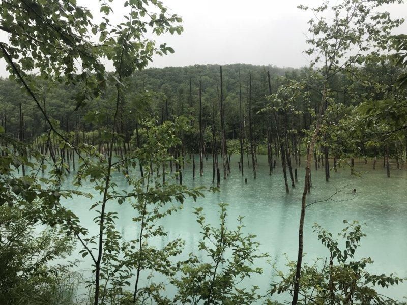 雨の青の池