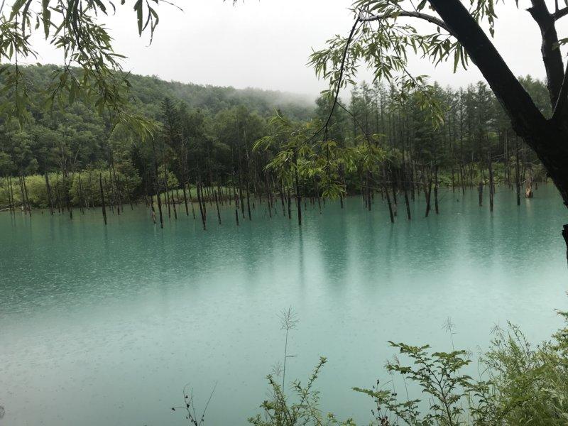 雨でもきれいなエメラルドグリーンの青の池